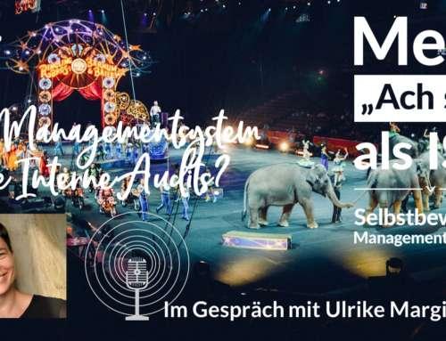 Ein Managementsystem ohne Audit? – Eine kleine Zukunftswerkstatt mit der Hochschulerfrischerin Ulrike Margit Wahl